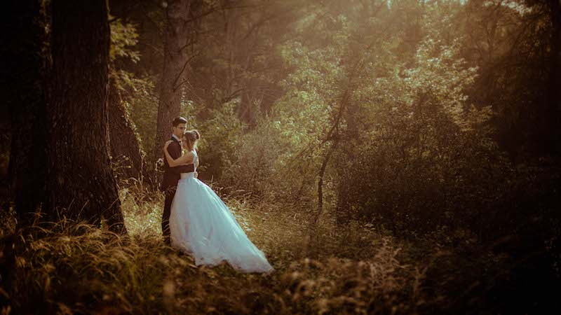 a couple in the forest by terence baelen photographer